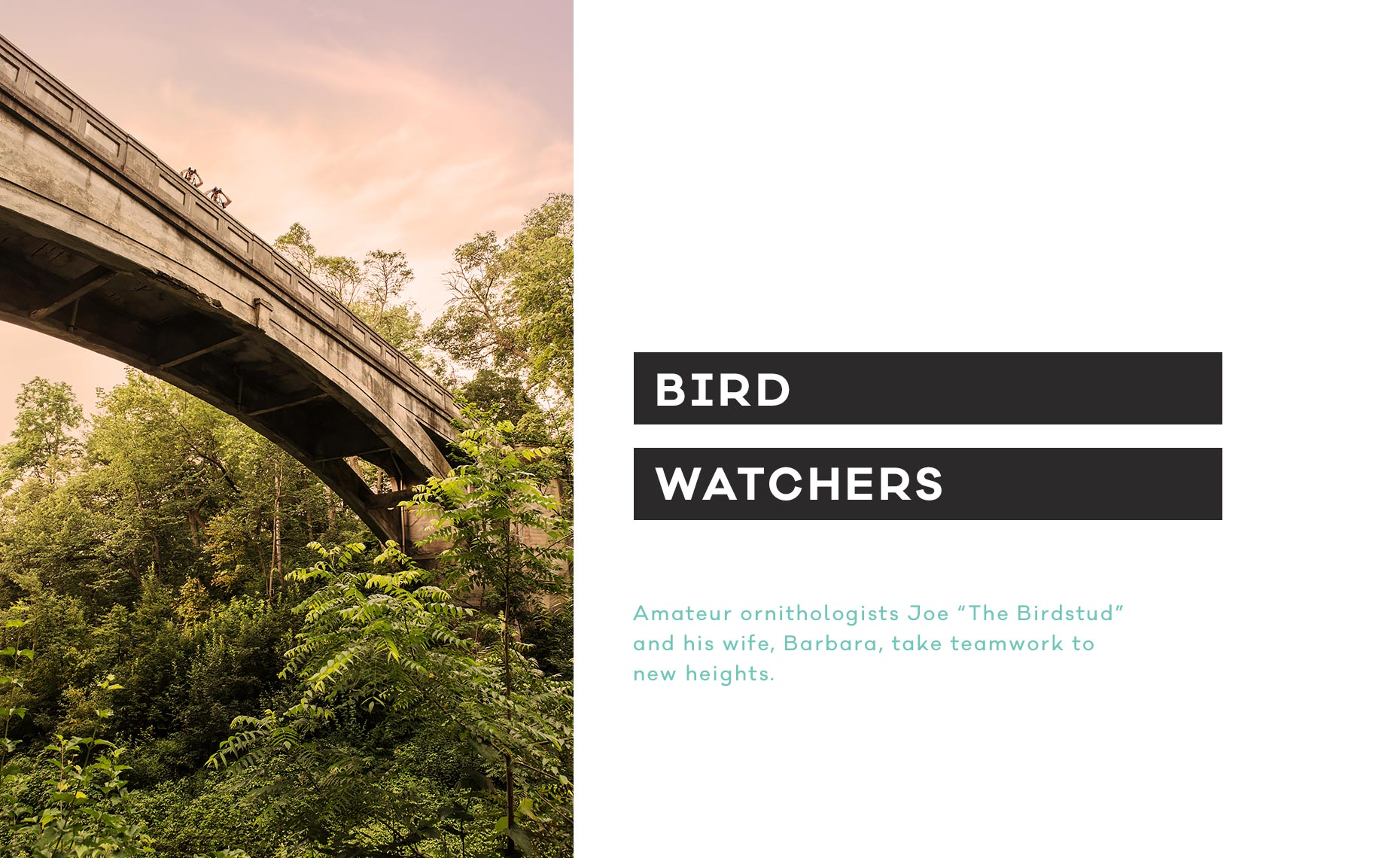 01_arm_bird_watchers_v2